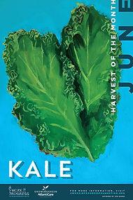 19484ll-WIP-June-Kalesmall.jpg