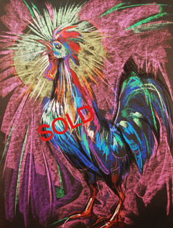 Rooster  (Live Series)