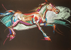 El Caballo - Horse  (Live Series)