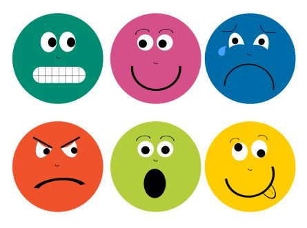 What is Social Emotional?