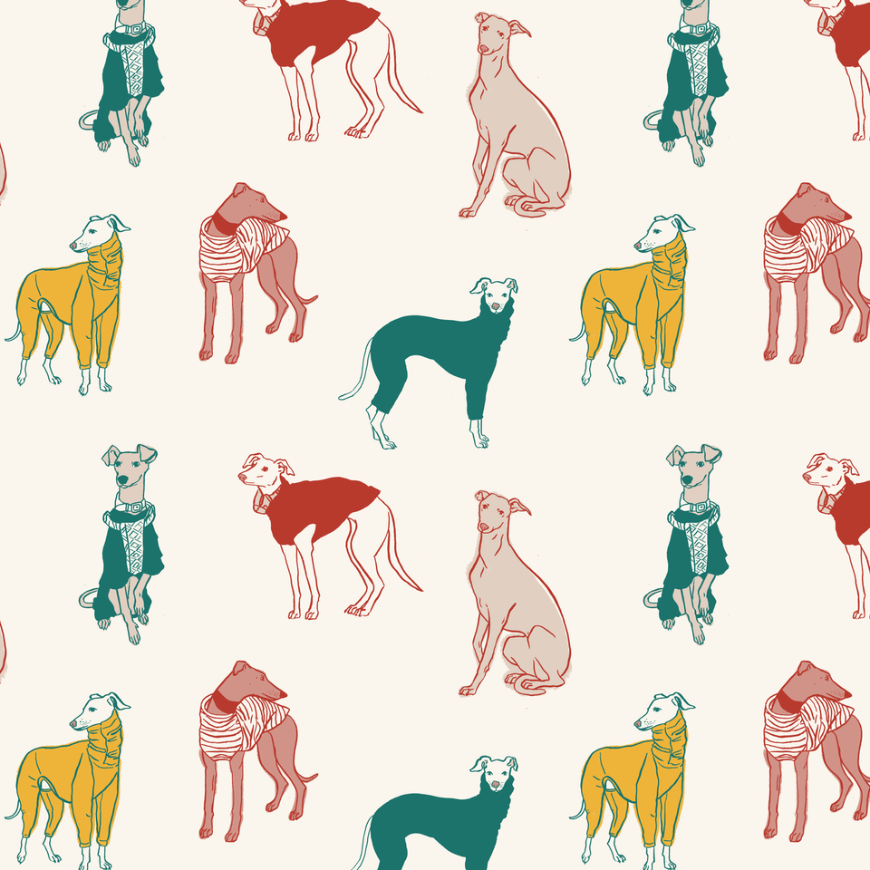 Whippets in Coats