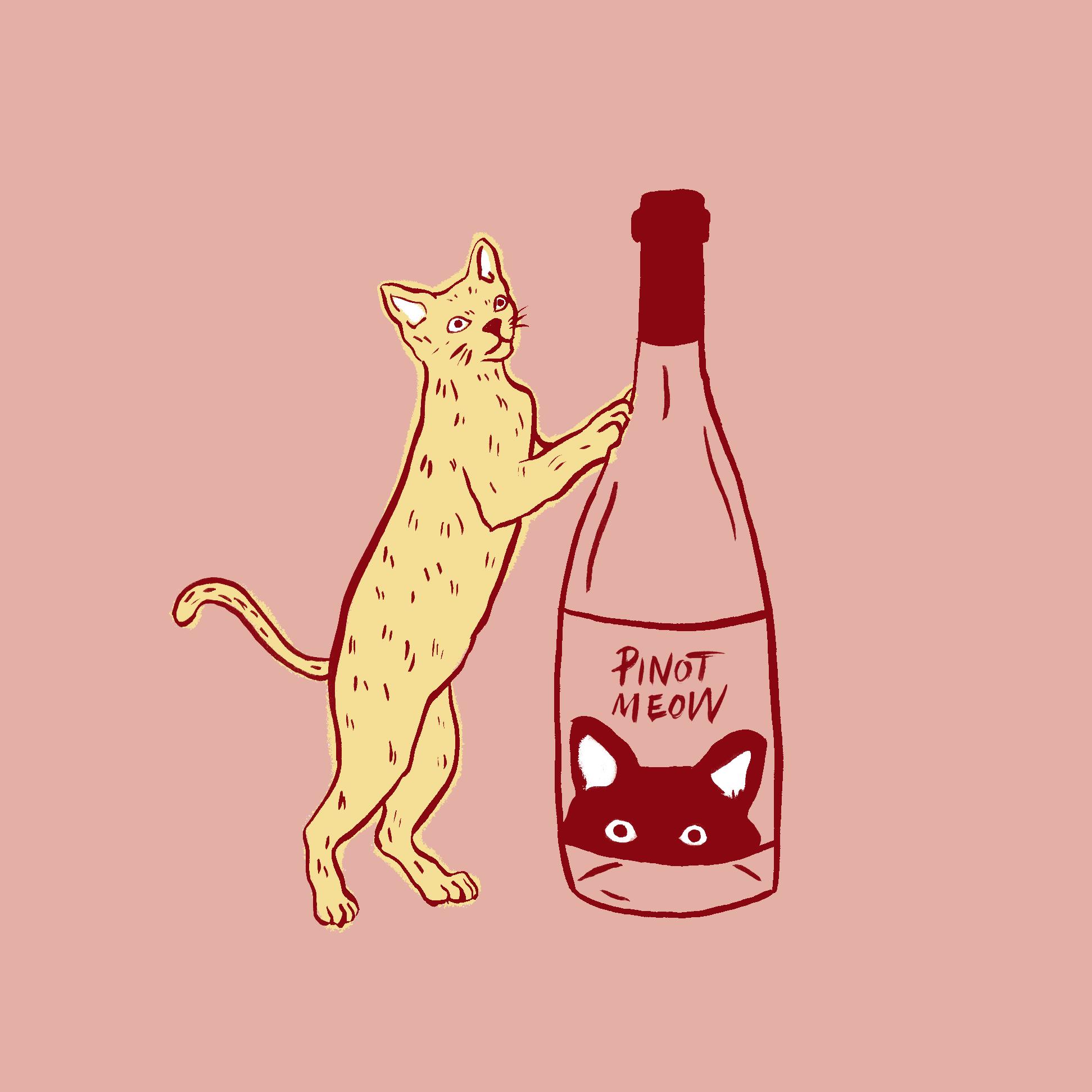 Pinot Meow V5