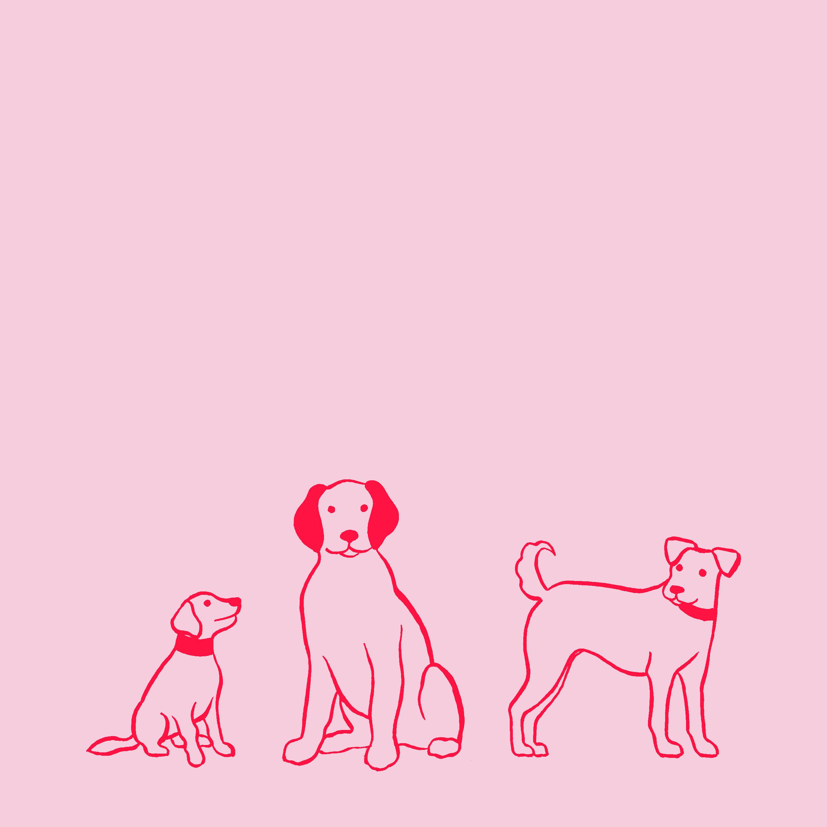 dog outline three