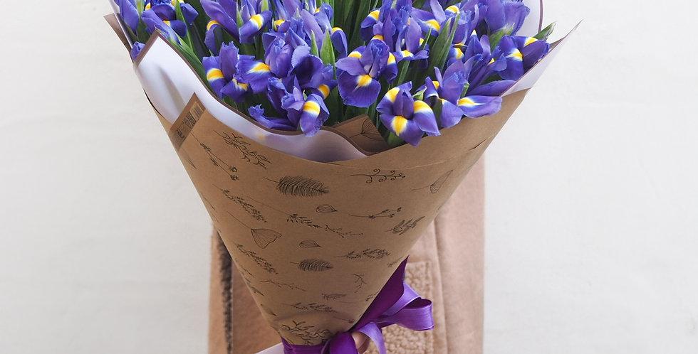 Bright irises