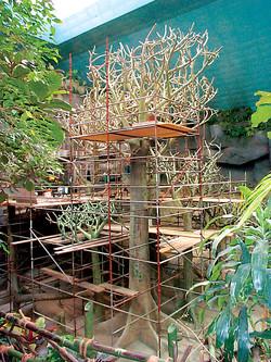 Brookfield Zoo, Africa House