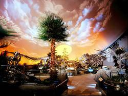 The Dinosphere