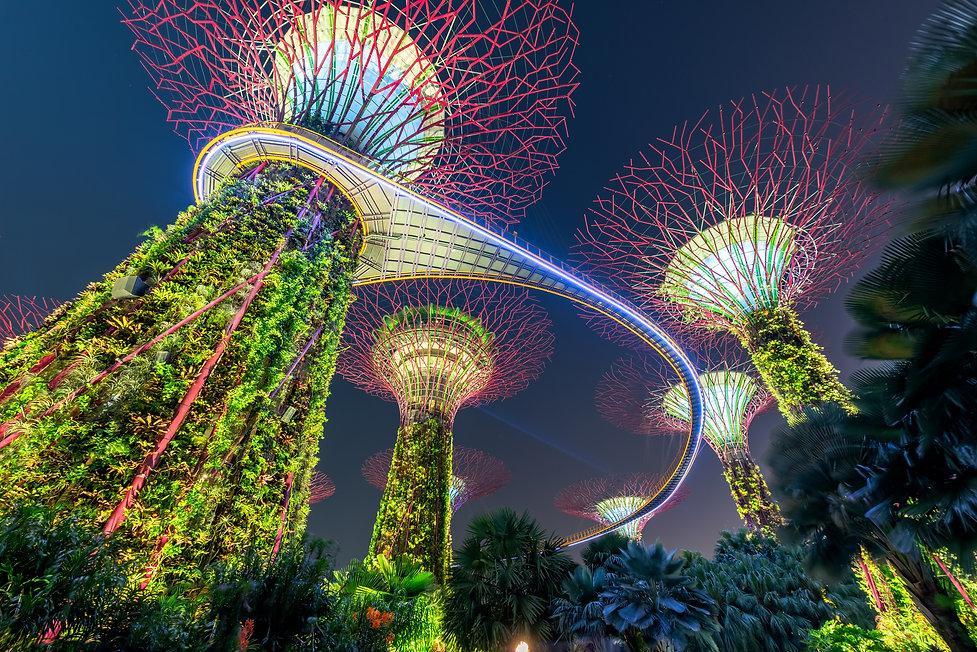 15.2019_Singapore_EAK.jpg