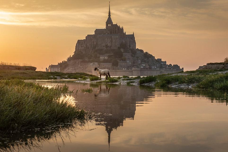 9.2019_France_Noom.jpg