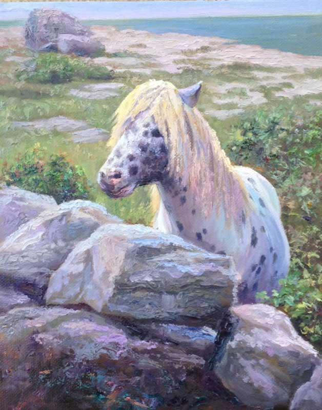 BDuffy-Irish-Bramble-Pony