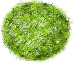 Dea Reinstead-Green