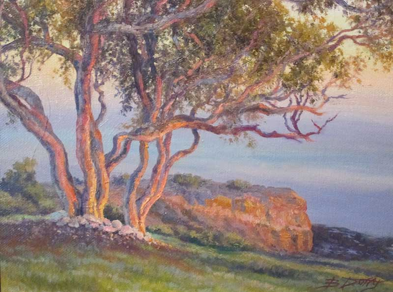 BDuffy-Palos-Verdes-Sunset-by-B.-Duffy