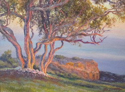 BDuffy-Palos-Verdes-Sunset-by-B.-Duffy