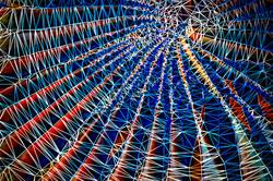 """Blue Web"""