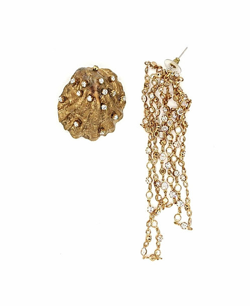 Glamorous seashell earrings