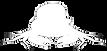 bowler crab logo white just crab BC icon