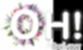 logo massaggi  web.png