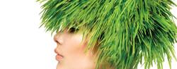 trattamenti capelli alba laser