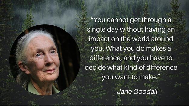 Jane Goodall_impact.png