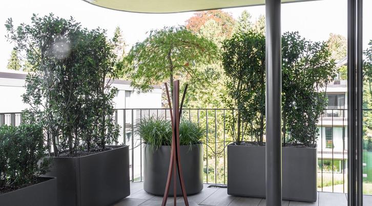 Terra_Gartenbau-5873.jpg
