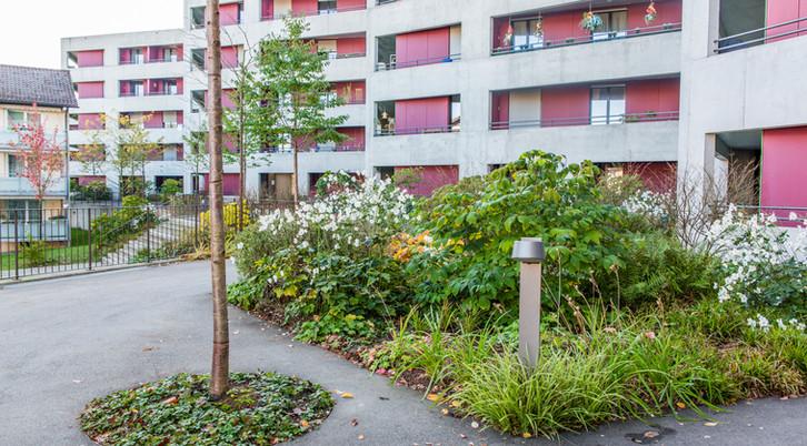 Terra_Gartenbau-6056.jpg