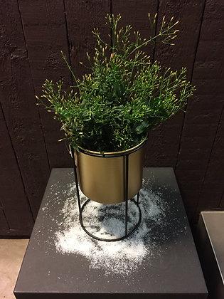Gouden staander met jasmijn H 28 cm