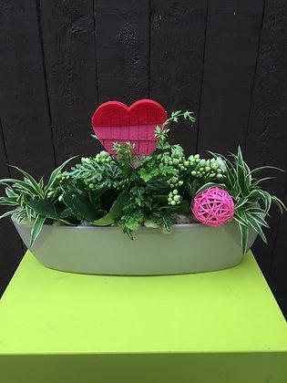 Bootvormige plantenschaal
