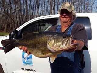 15.7lb Texas Bass