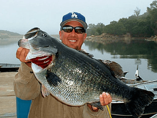 Lunker Lore:  Jed Dickerson 21.6 lbs!