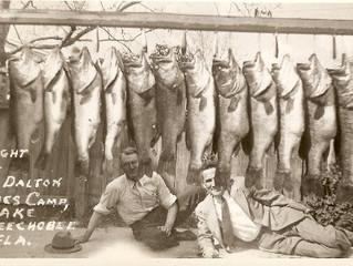 Heaviest Single Day 5 Fish Limit