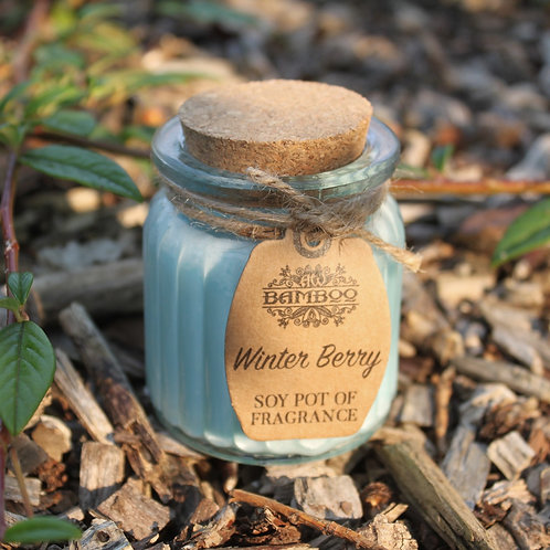 Winter Berry Fragrance Mini Soy Candle