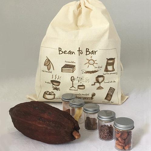 Chocolate bean to bar teaching resource kit.