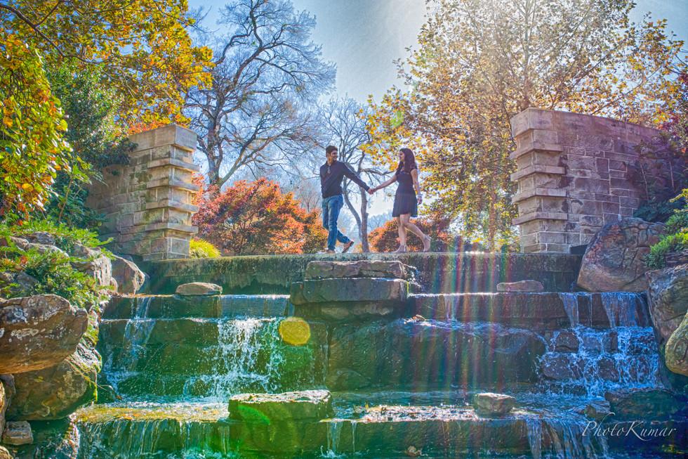 Dallas Arboretum and Botanical Garden-December-8