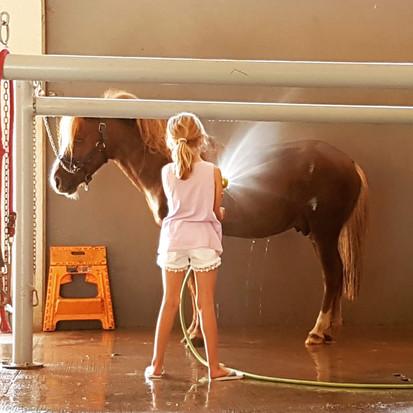doccia calda pony Varese