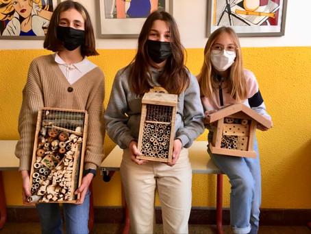 Eerstejaars bouwen insectenhotels