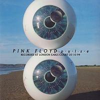 Pink Floyd Pulse Laserdisc_1.jpg