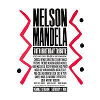 Nelson Mandela 70 Birthday Tribute_2.jpg