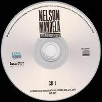 Nelson Mandela 70 Birthday Tribute_4.jpg