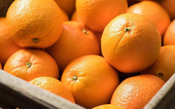 Oranges (3)