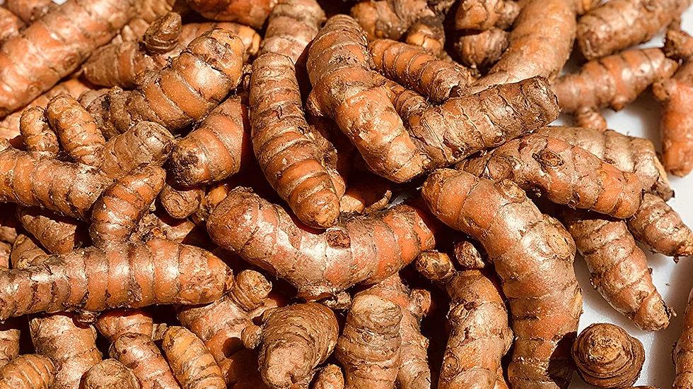 Turmeric Root (1/2 Lb)