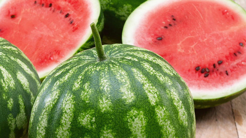 Watermelon - Large