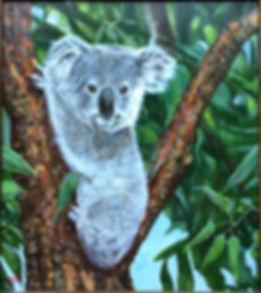 Koala Painting Brisbane Queensland
