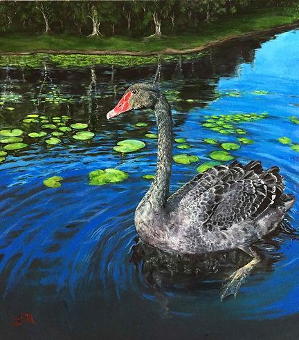 black-swan-for-web.jpg