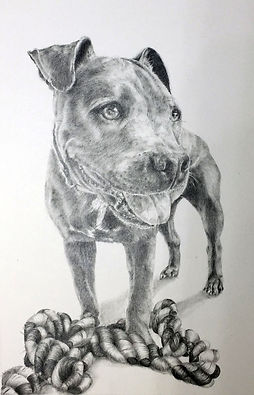 Graphite of Odin, Staffy