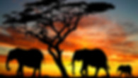 sud_africa1.jpg