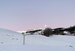 Morgen Mond