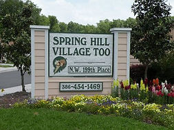 Spring Hill Village Too.jpg