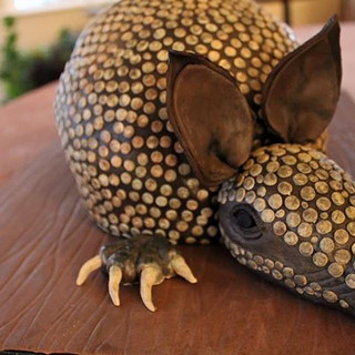 Hey there, armadillo...