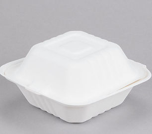 takeout container small.JPG