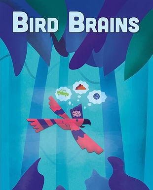 bird brains (1).jpg