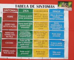 Doenças transmitidas pelo Aedes